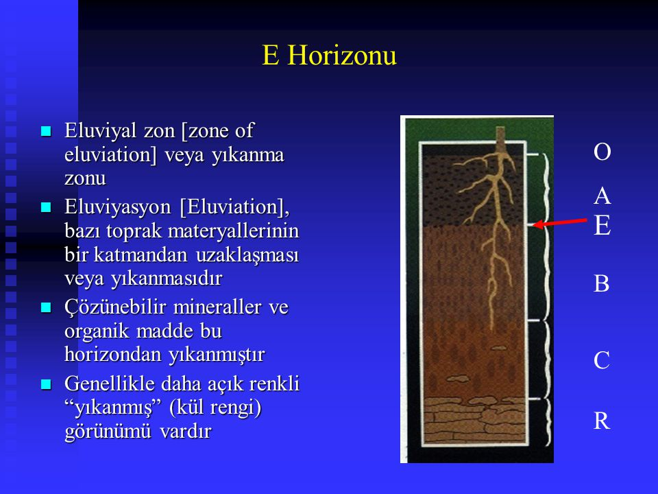 E Horizonu Eluviyal zon [zone of eluviation] veya yıkanma zonu.